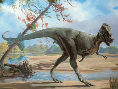 the first small dinosaurs that appeared on earth were the coelophysis    First Mammals On Earth